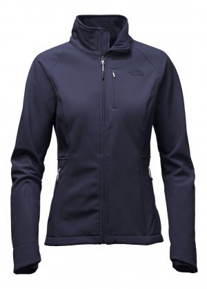 The North Face Womens Apex Bionic Jacket - WinterWomen.com