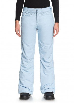 Roxy Womens Backyard Pant - WinterWomen.com